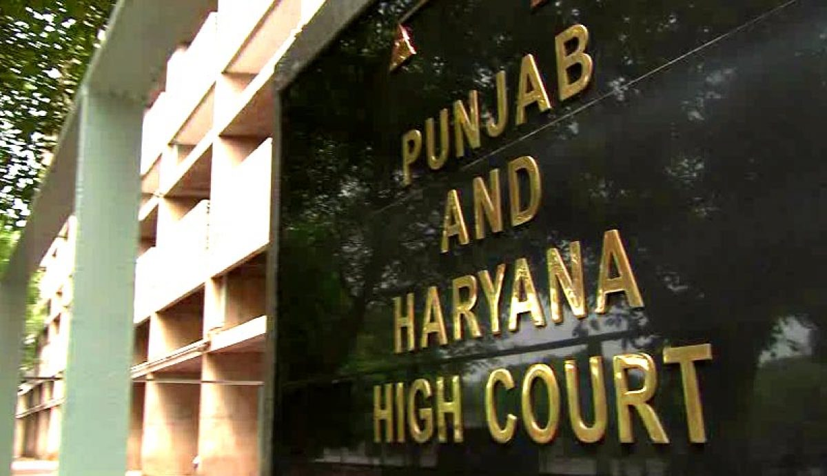 Online post against SC and Muslim women, P&H High Court refuses bail |  SabrangIndia