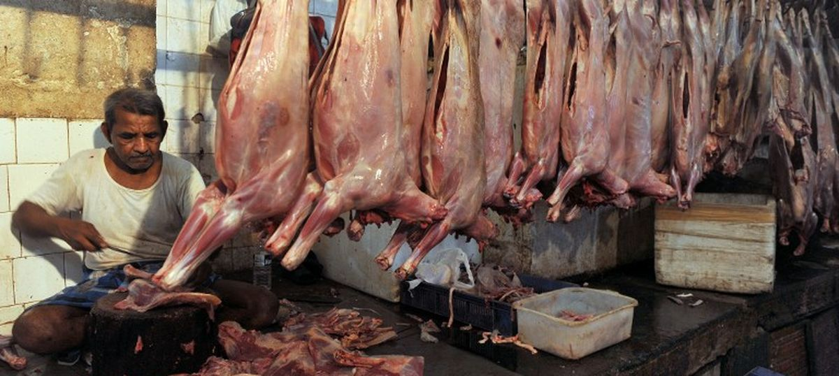 my article on indian meat industry Though these hormones are beneficial to the meat and dairy industry, these  injections may prove to be harmful to the  feminism in my year of meats essay.