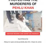 Pehlu Khan Report