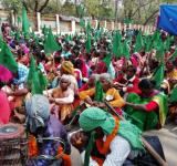 Paidal march, Forest Rights
