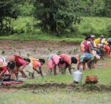 Agri workers