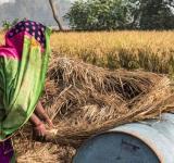 Loan Waivers, Farm Subsidy