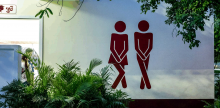 Toilet Marketing